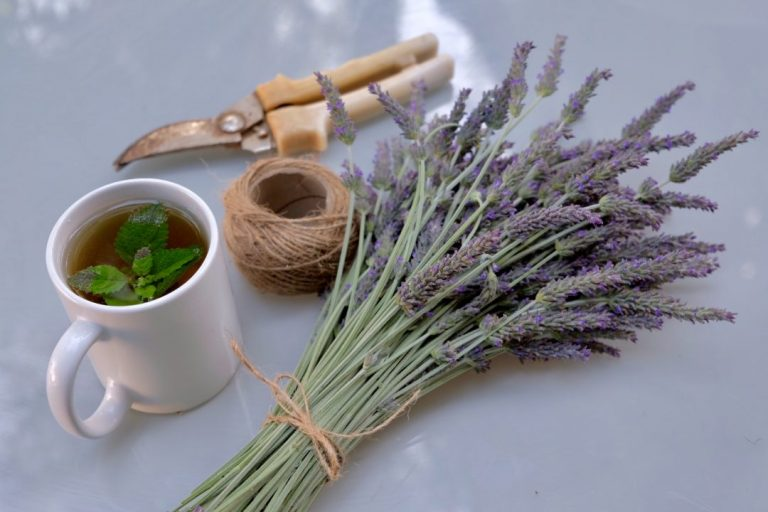lavender & herbal tea from our garden